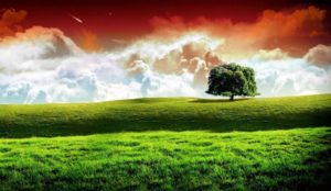 Indian-Flag-HD-Images-Wallpapers-