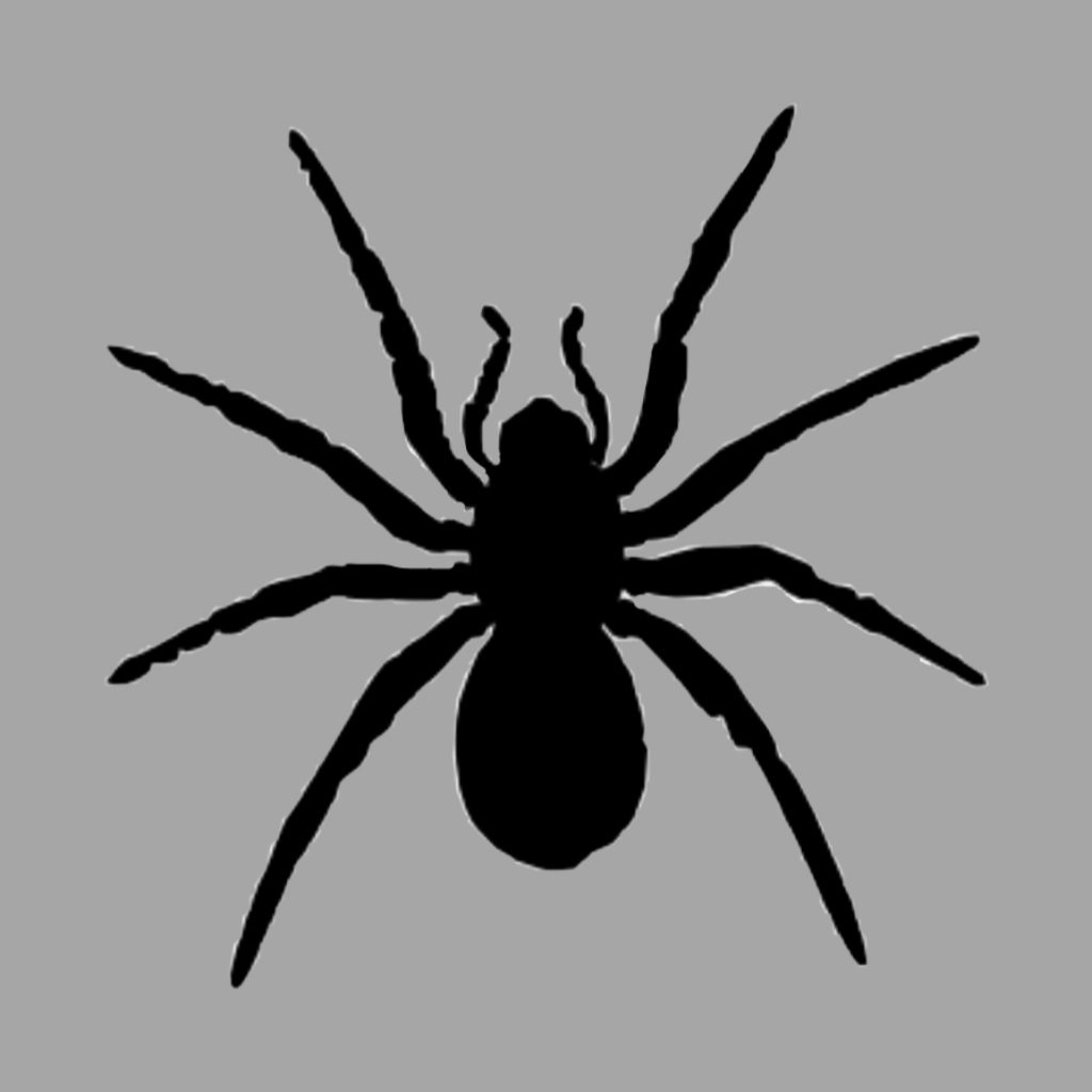 Toxic Spider Photo Editing Background And Text Png Picsart Photo Editing They are the largest order of arachnids and rank seventh in. picsart photo editing